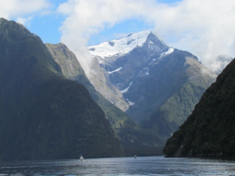 Cruising through Milford Sound, New Zealand